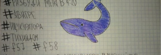 La Blue Whale è tornata, caso choc in Italia: «Una ventenne con tagli al braccio». Torna l'allarme