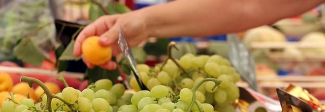 Istat, rallenta l'inflazione a maggio: frutta meno cara rispetto al 2018