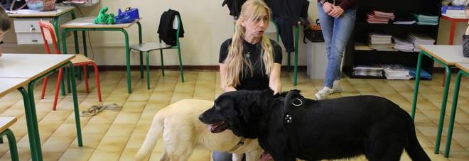 I cani in cattedra alle elementari con la  Empathy school