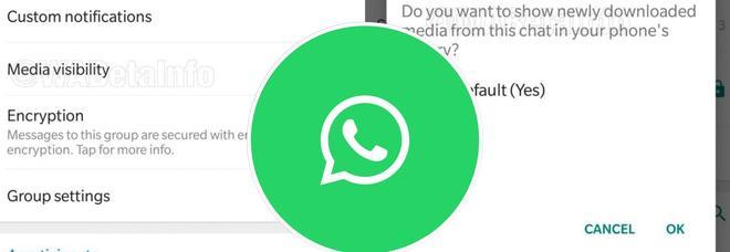WhatsApp, la nuova funzione in arrivo: ora sarà possibile nascondere le foto ricevute in chat