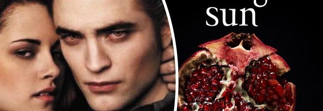 """Twilight sta per tornare, Stephenie Meyer annuncia l'uscita di """"Midnight Sun"""" e il sito va in tilt: «Cambia il punto di vista»"""