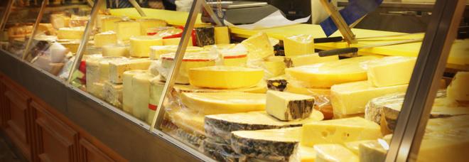 Due formaggi ritirati dai supermarket, sono a rischio Escherichia coli