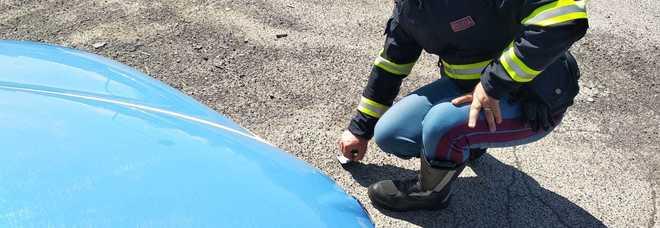 Tranciata la gamba ad un 15enne in un incidente sulla Nettunense. Stradale sulle tracce del