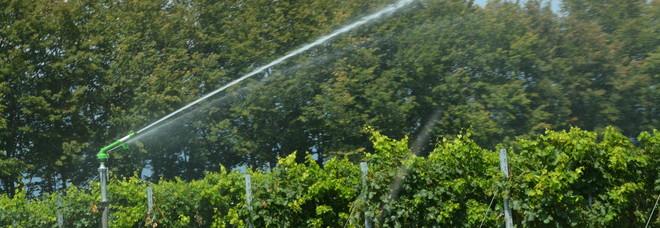 Allarme siccità: -40% la portata dei fiumi, -40% di piogge