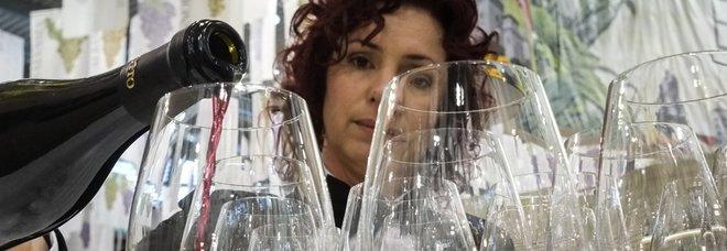Il vino è l'oro delle Marche: sale l'export. «Possiamo competere con chiunque»