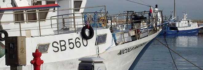 San Benedetto, operazione mare pulito: dodici barche vanno a pesca di plastica