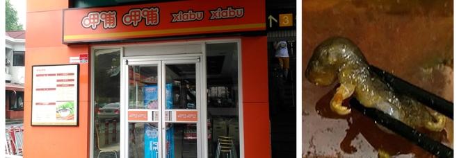 Topo nella zuppa al ristorante cinese: il cliente pubblica il video choc