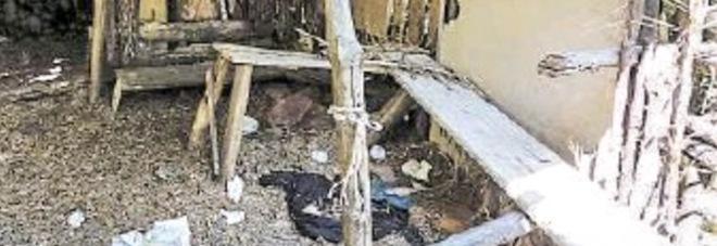 Ragazzina di 15 anni violentata: niente cella per gli 11 del branco