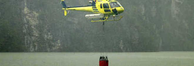 Rogo nel bosco: quindici ettari di verde bruciati in Valinis