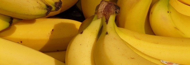 Banane, importanti per la salute delle ossa e combattere l'anemia