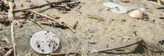 Svelato il mistero dei dischetti di plastica sulle spiagge tirreniche