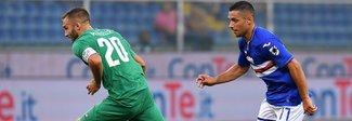 La Fiorentina spaventa la Samp: Caprari aggancia il pareggio