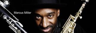 Da Forastiere a Dente & Catalano, da Wrongonyou a Marcus Miller, leggenda del basso