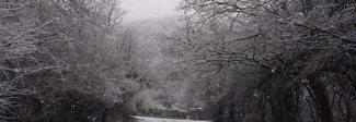Neve a Marzo ad Altipiani di Arcinazzo