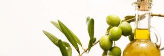 Sbarca a Napoli il primo Social Evo: la startup dell'olio extra vergine