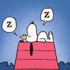 Oggi è la Giornata Mondiale del Sonno. I consigli per dormire meglio: attenti a lavarvi i denti...