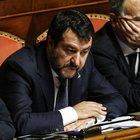 «Conte Pinocchio»: seduta sospesa in Senato per il cartello della Lega