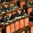 Pinocchio in Aula al Senato mentre Conte riferisce su Mes. Casellati sospende la seduta