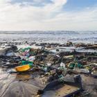 Legambiente: «L'80% dei rifiuti sul mare è plastica». Dall'inizio dell'anno 500 spiagge pulite
