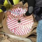 Napoli, traffico internazionale di sigarette: sequestrati due container in porto