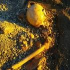 Scavi di Pompei, Osanna denuncia:  «Scheletro depredato dai tombaroli»