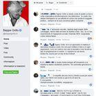 Grillo: la xylella è una bufala. Rivolta online, gli utenti lo attaccano: «Colpevole disinformazione»