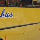 Bimbo dimenticato nello scuolabus della gita, muore a 3 anni dopo ore sotto al sole