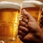 «Massimo due litri di birra a testa», troppe risse all'ippodromo e arrivano le restrizioni