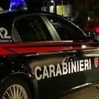 Scovata piantagione di marjuiana a Montecorice, due arresti da parte dei carabinieri