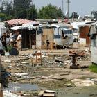 «Bonus a chi ospita un rom», la nuova idea del Campidoglio