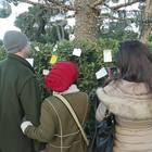 I romani lasciano bigliettini sull'albero