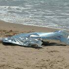 Cadavere trovato in spiaggia a Ostia nella notte, indaga la polizia