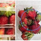 Aghi nascosti nelle fragole, preso il terrorista dei supermercati: ecco chi è