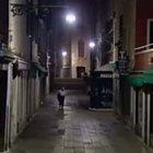 Aggressioni nelle calli di Venezia: il fantasma ha le ore contate Ecco l'identikit