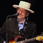 Bob Dylan alla chitarra