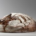 Nella crosta del pane componenti che invecchiano le cellule