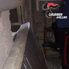 Topo d'appartamento preso in casa con un grosso tondino di ferro