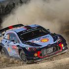 Neuville (Hyundai) vittoria in Portogallo e primato in classifica. Due Fiesta sul podio: Evans e Suninen