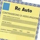 Polizze Rc auto false, l'Ivass segnala cinque siti internet irregolari