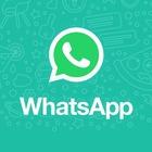 WhatsApp, due novità in arrivo per Android: sticker animati e sfondo nero (ma occorre attendere ancora un po')