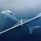 FAKE: Una gigantesca balena passa sotto Samuel de Champlain Bridge in Canada, la foto è virale