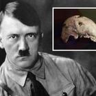 Hitler in Sud America «Il cranio è il suo»
