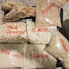 Il souvenir: furti di sabbia sulle spiagge in Sardegna