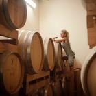 In alto i calici (e gli hashtag): l'azienda vinicola Le Torri punta su Instagram