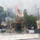 Napoli, incendio a Posillipo: paura tra la gente Foto