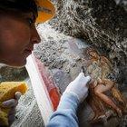 Pompei, meraviglia a luci rosse: scoperto l'affresco di Leda e il Cigno