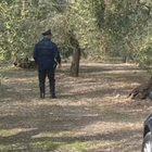Male di vivere, suicida a 33 anni nei boschi dell'Alta Irpinia