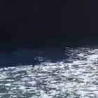 Il padre che ogni giorno si tuffa nel fiume Adda per cercare la figlia annegata