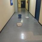 Bacinelle a terra per raccogliere l'acqua che piove dal soffitto: benvenuti in tribunale