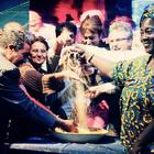 San Vito Lo Capo, torna il Cous Cous Fest: ospiti Le Vibrazioni ed Ermal Meta